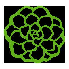 Eden Plantae